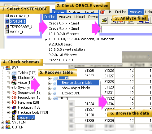 recovery oracle dul for windows